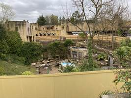 Croc Drop Construction, 15th March 2020, Chessington World of Adventures Resort