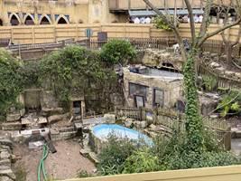 Croc Drop Construction, 15th March 2020, Chessington World of Adventures Resort